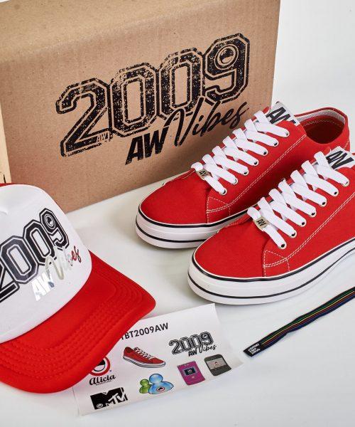 zapatos clasicos AW